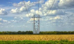 A transmission line crosses a field near Lawrence, Kansas. (Photo by David DeHetre via Creative Commons)